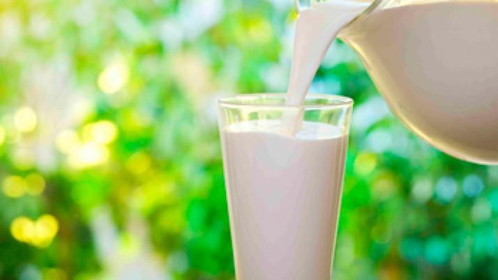 ¿Por qué es tan importante consumir leche?