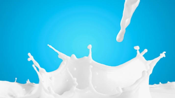 Cuatro falsos mitos sobre la leche