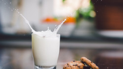 """El Salvador inaugura segunda planta procesadora de lácteos que abastecerá al programa """"Vaso de leche"""""""