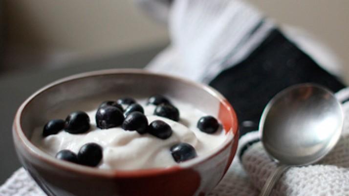 ¿Qué tipo de yogur es mejor incorporar a la dieta y por qué?