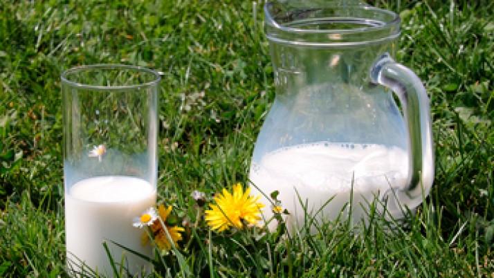 II Seminario de actualización en leche y productos lácteos
