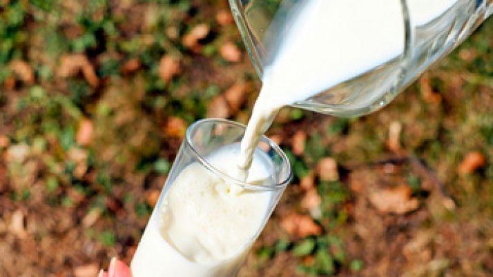 Los beneficios de la leche: la ciencia como mejor argumento