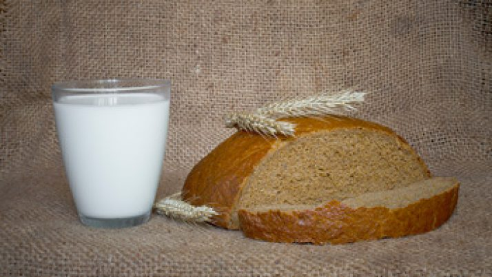 Cuáles son los principales nutrientes de la leche para la salud
