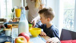 Leche y bebidas vegetales: diferencias nutricionales