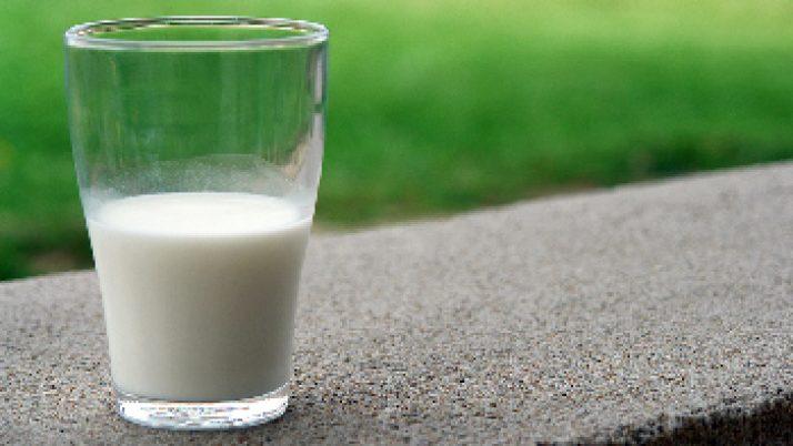 La leche en la alimentación del paciente diabético