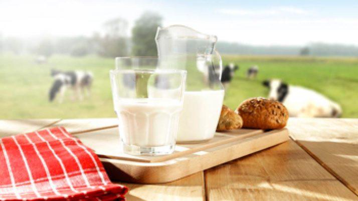 La leche en México