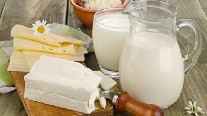 Lácteos que debes incluir en tu dieta