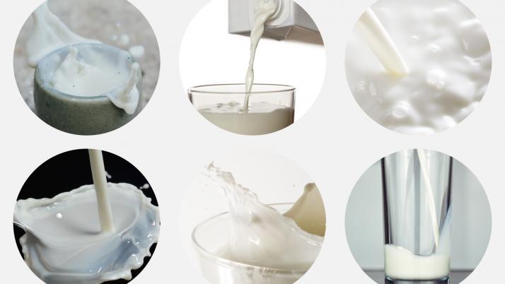7 beneficios de la madre de los lácteos