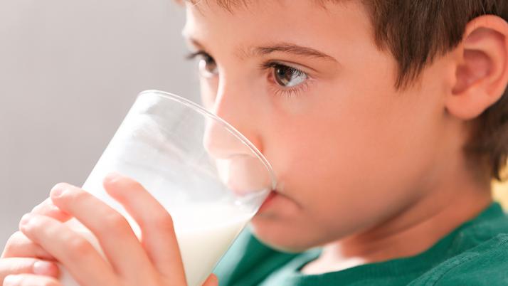 ¿Son los productos lácteos un factor de riesgo para la obesidad infantil?