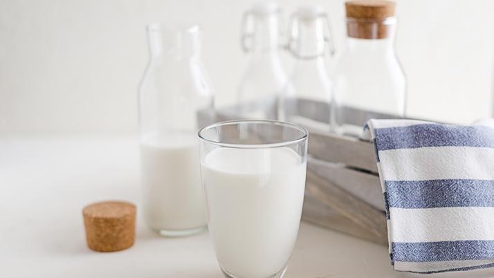 Los lácteos ¿son necesarios durante el embarazo?