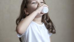 Los productos lácteos bajos en grasa no son necesariamente mejores para los niños
