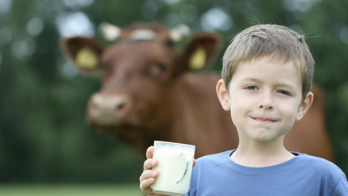 Para los niños que toman leche entera no supone un aumento de peso