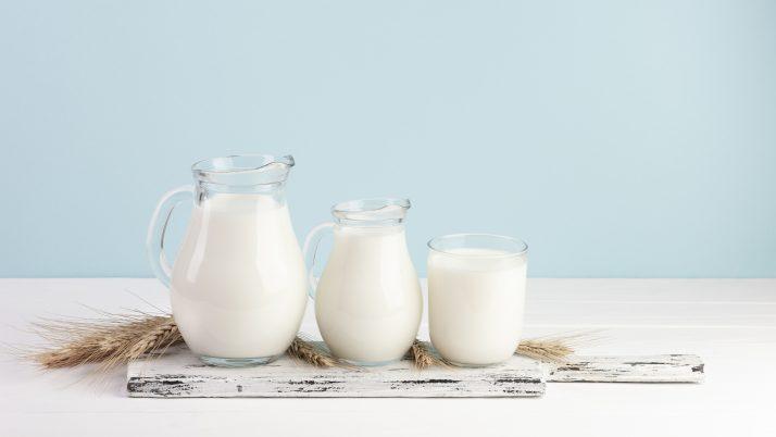 Lácteos y su rol sobre el Sistema Inmunológico