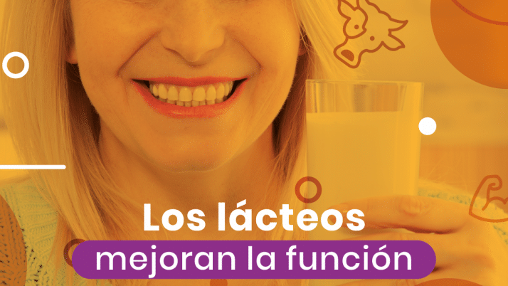 Los lácteos mejoran la función cardiovascular