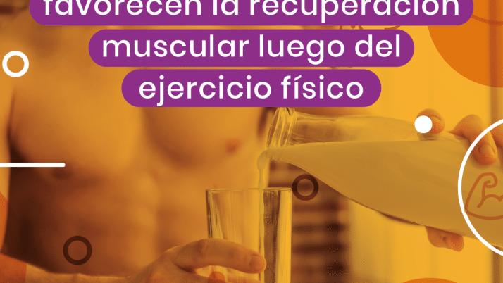 Los lácteos favorecen la recuperación muscular luego del ejercicio físico